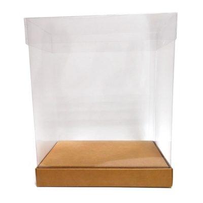 Caja de pvc transparente con base de cartón