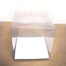 Caja transparente con cierre de mariposa